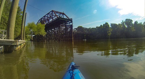 Savannah River Paddling-157