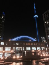 Toronto for the 2015 Summit on Sexual Violence and Harassment