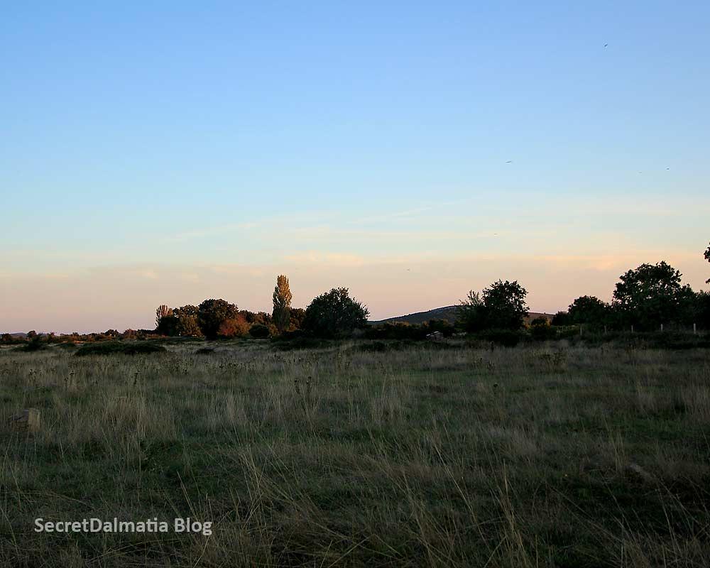 The fields of Dobra Voda near Stankovic