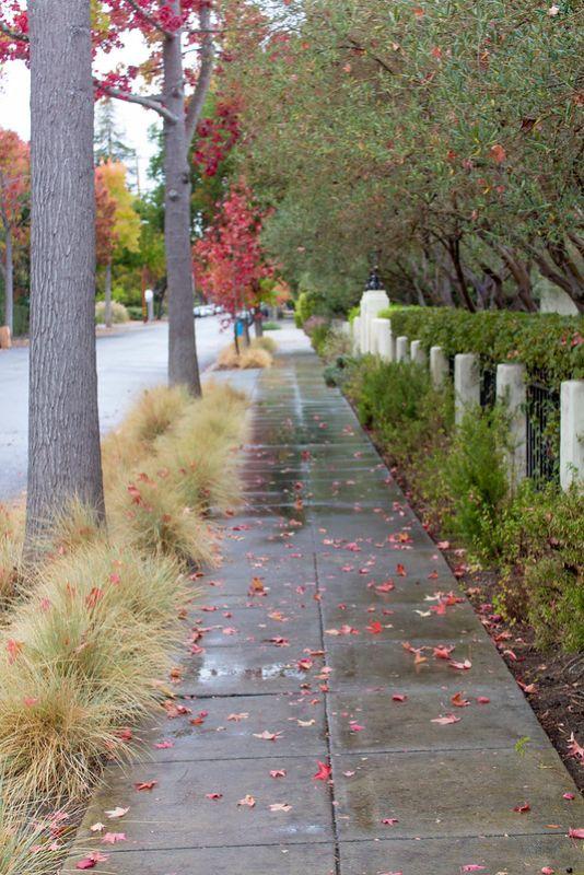 11.08. Palo Alto