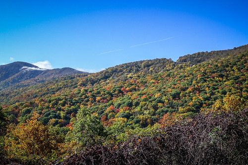 Blue Ridge Parkway in Autumn-7
