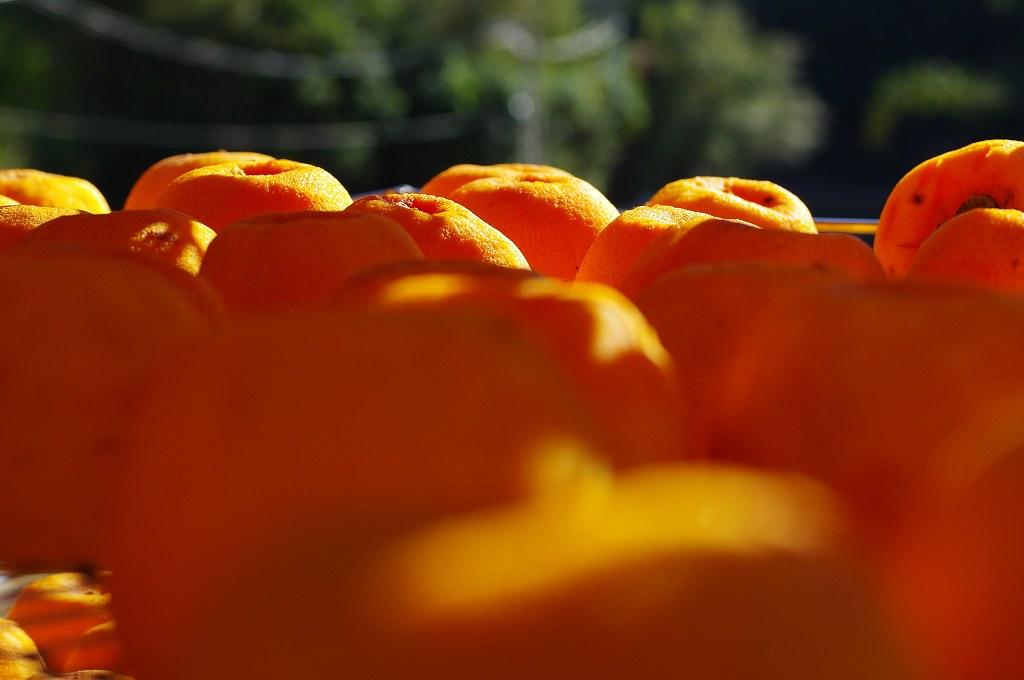 Eric的攝影世界 – 新埔柿餅