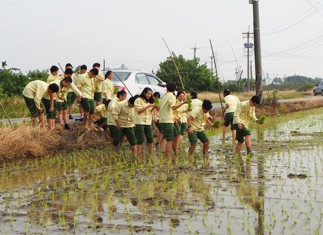 食農教育 (9)