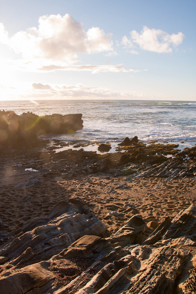 03.17. Bean Hollow State Beach