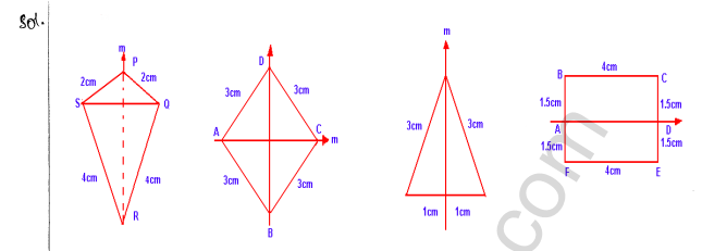 ml-aggarwal-icse-solutions-for-class-10-maths-chapter-13-symmetry-18