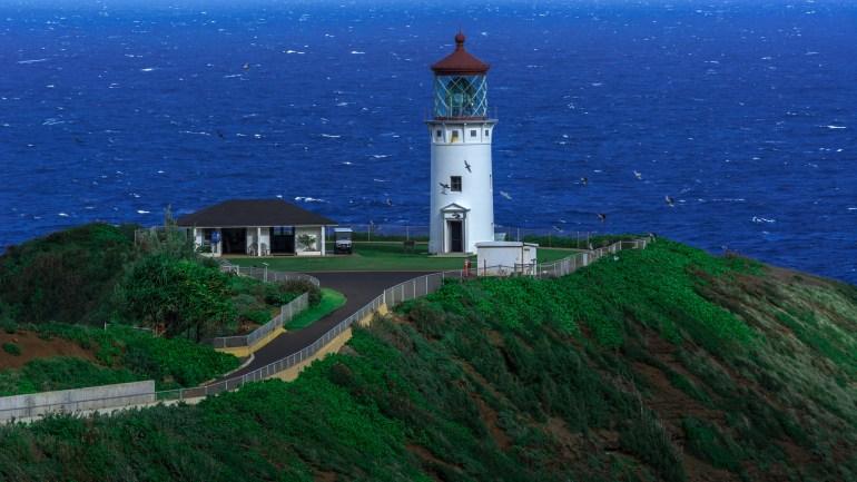 Choose your adventure with Kauai Sea Tours