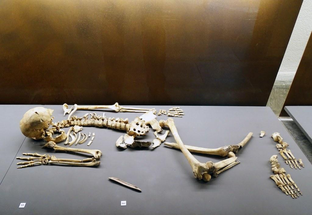 esqueleto de mujer en Aizpea Aribe valle de Aezkoa Epipaleolitico Museo de Navarra Pamplona