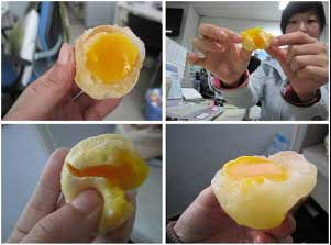 telur ayam palsu