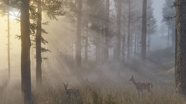 red-dead-redemption2_180504 (6)