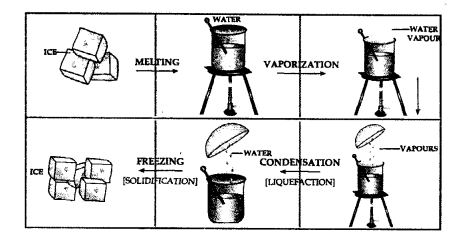 Selina Concise Chemistry Class 6 ICSE Solutions - Water 18