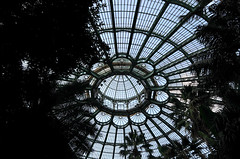 royal greenhouses - copyright travelformotion 23