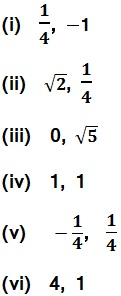 Class 10 Maths Chapter 2 Polynomial 2.2 19