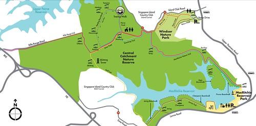 MacRitchie Reservoir Trails