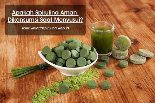 Madu Manuka Indonesia