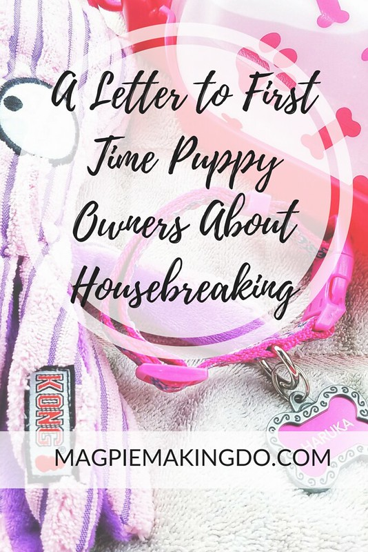 A Letter to First Time Puppy Owners About Housebreaking - Magpie Making Do