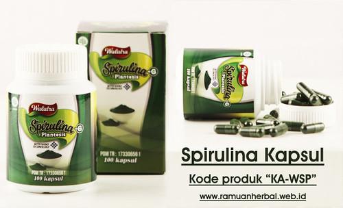 Obat Gemuk Herbal Spirulina Kapsul