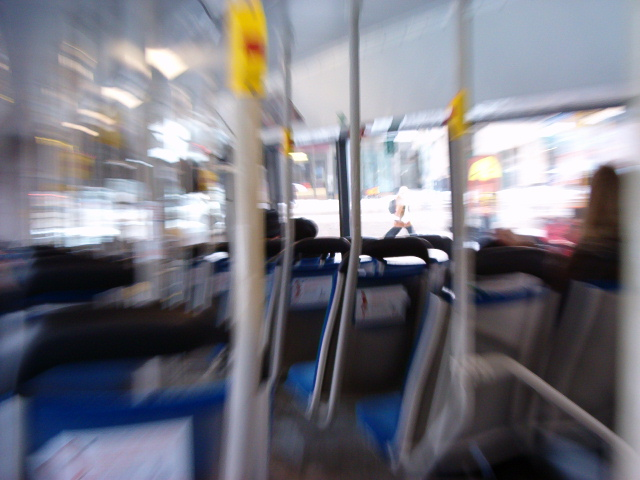 HPIM0370. Zoomaus bussissa