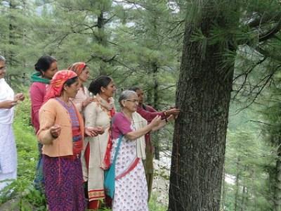 वृक्ष बचाने के लिये सामने आईं महिलाएँ