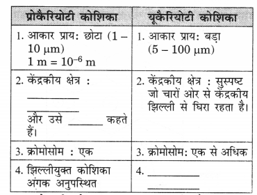 NCERT Solutions for Class 9 Science Chapter 5 (Hindi Medium) 1