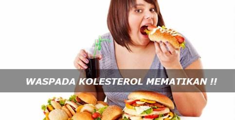 Obat Kolesterol Tinggi Paling Ampuh di Apotik