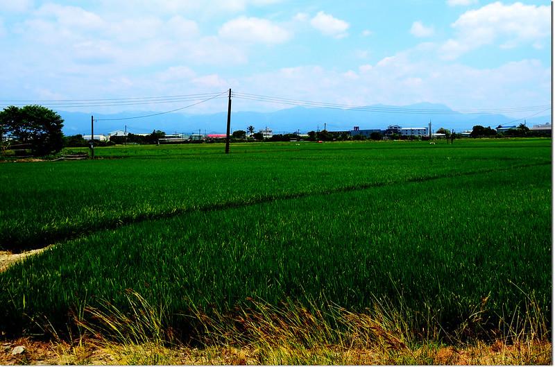 臺灣郊山、中級山--雲、嘉、南、高、屏 @ 退隱山林 :: 隨意窩 Xuite日誌