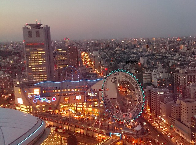 dome hotel view