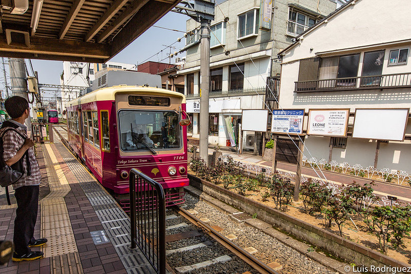 Linea-Toden-Arakawa-Tokyo-Sakura-Tram-11