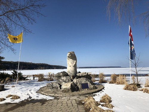 Owen Sound - Wiarton Willie