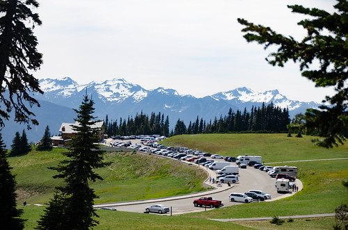 Hurricane Ridge Road in Olympics National Park-013