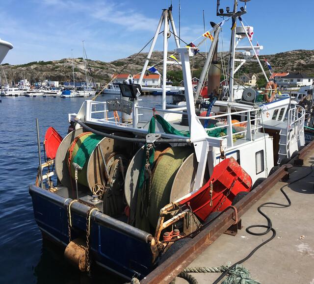 Havets_dag_ronnang - 9