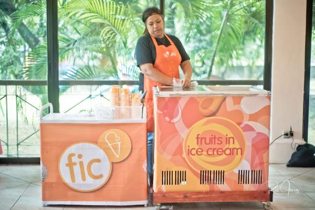 food carts (4)