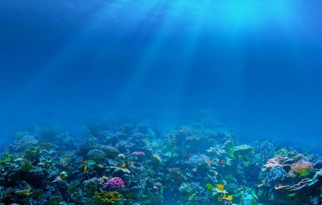 coral-reef-ocean-1000x636