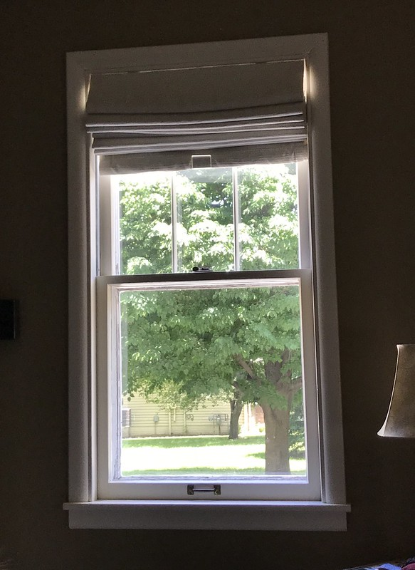 view through my window