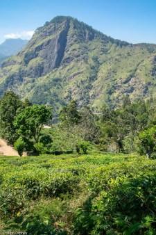 lust-4-life travel blog Sri Lanka Trincomalee-3 Kopie