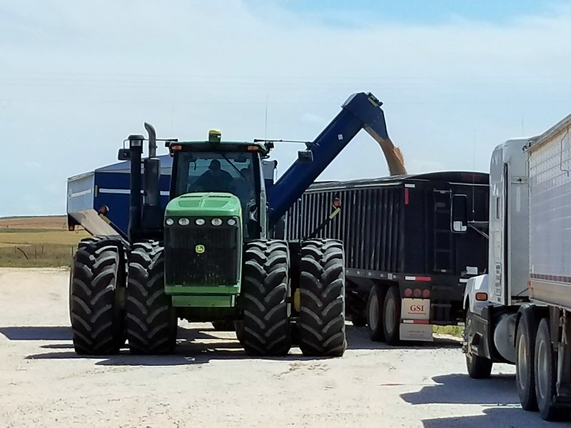 Dumping the grain cart.