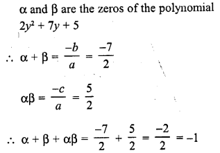 rd-sharma-class-10-solutions-chapter-2-polynomials-vsaqs-32
