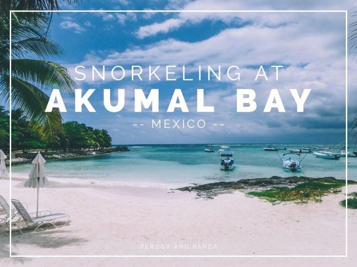 Snorkeling At Akumal Bay In Mexico (Mayan Riviera)