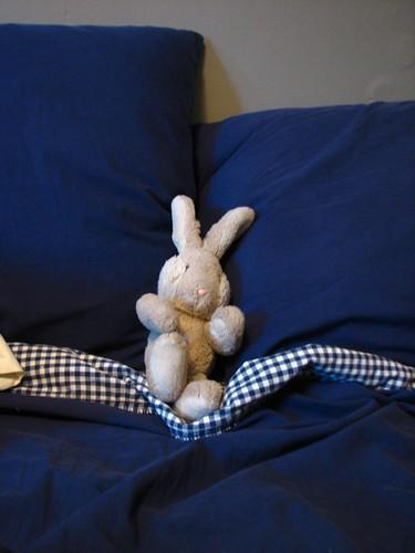 Ottawa Bunny