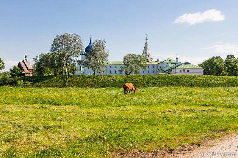 Суздальский кремль, Суздаль