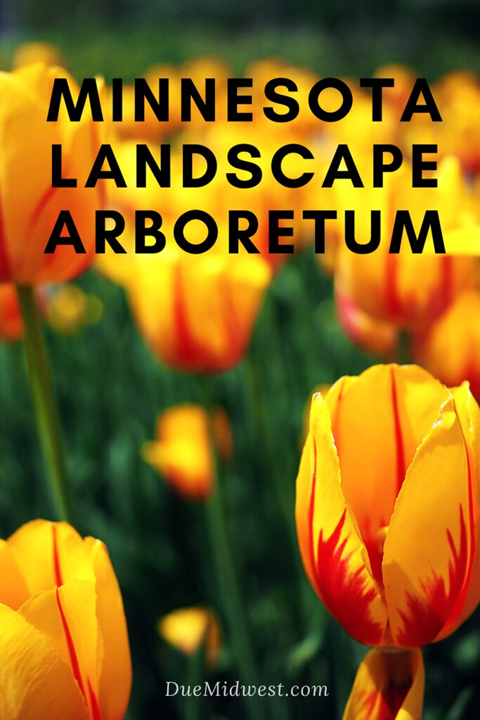 Minnesota Landscape Arboretum| what to see and do - DueMidwest.com