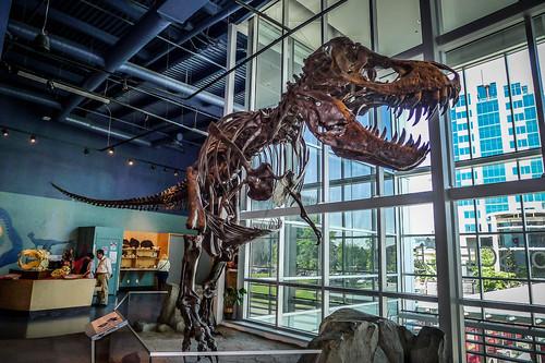 Telus World of Science Museum-039