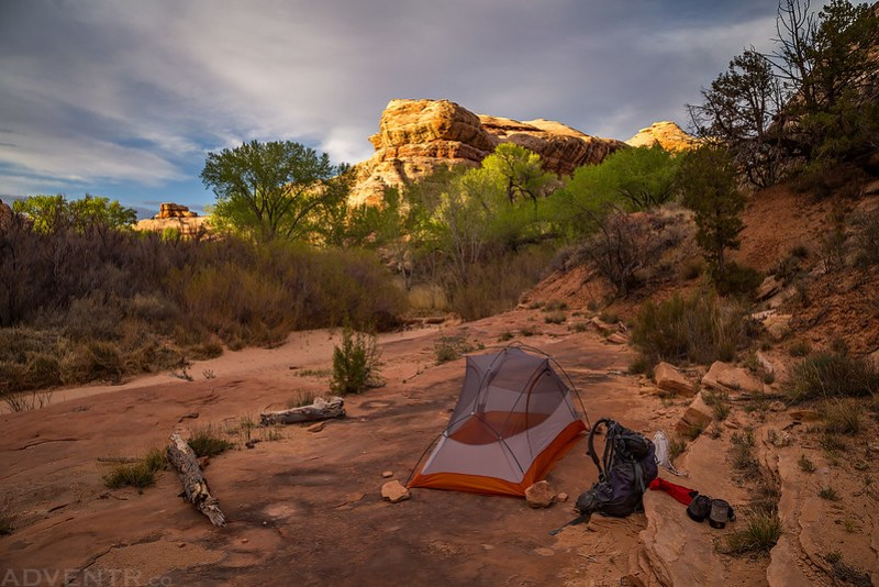 Grand Gulch Camp
