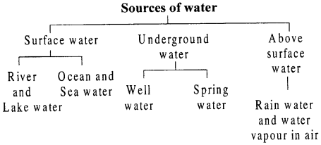 Selina Concise Chemistry Class 6 ICSE Solutions - Water 1