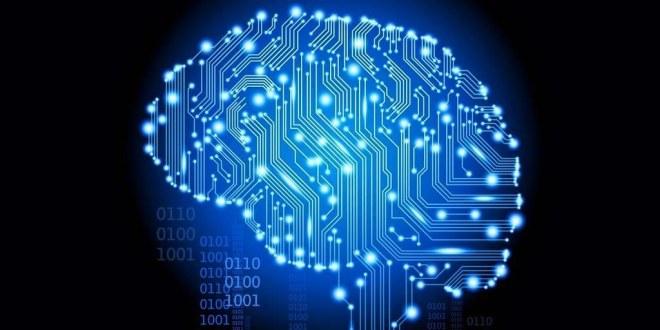 Commutation-des-circuits-cérébraux