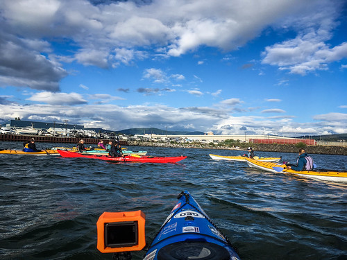 Bellingham Harbor with Moondance Kayaks-12