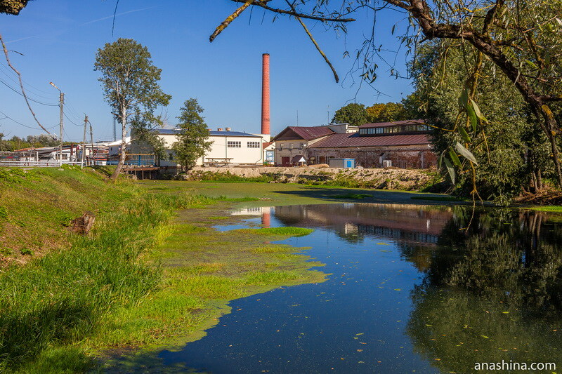 Полотняно-Заводская бумажная фабрика