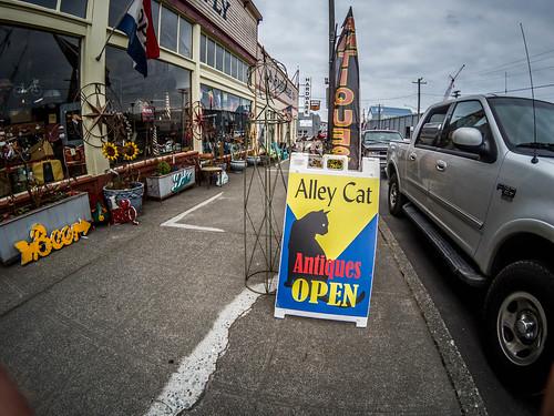 Alley Cat Antiques and Olsen Building Basement-051