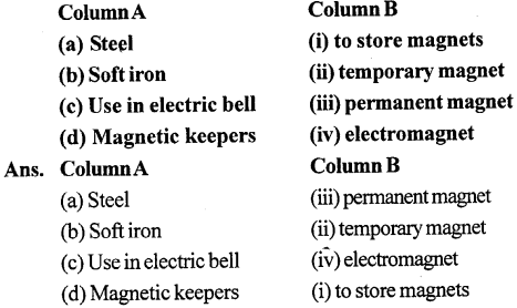 Selina Concise Physics Class 6 ICSE Solutions - Magnetism 4
