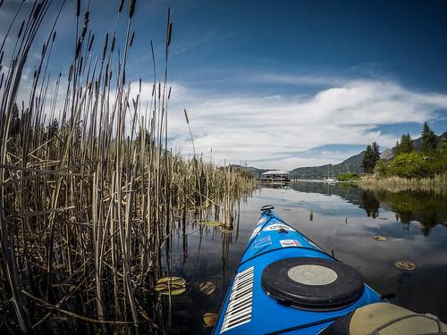 Lake Samish Paddling-33