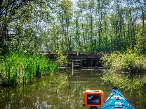 Lake Samish Paddling-81